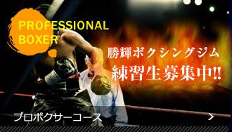勝輝ボクシングジムのプロボクサーコース